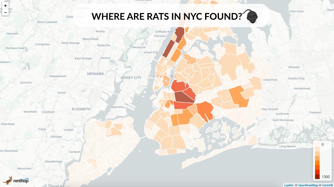 rats_nyc