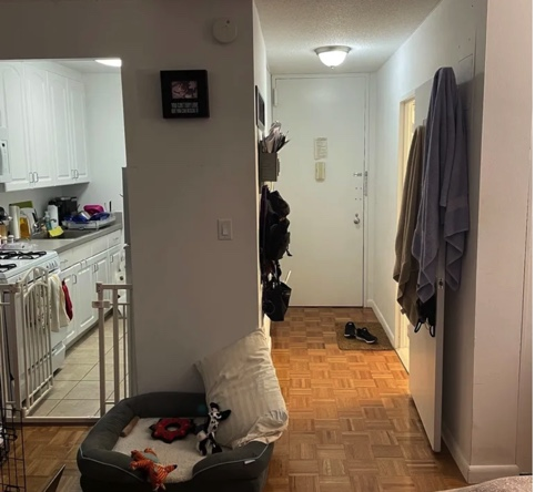apartment listing photo of foyer, kitchen, and dog bed on living room floor